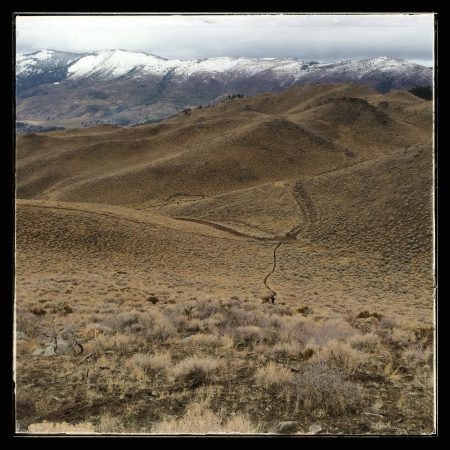 Trail Run on Peavine