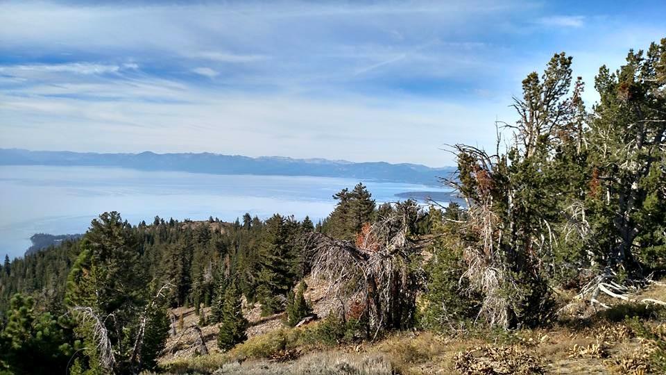 Top Of Mt. Baldy