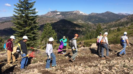 Truckee Donner Land Trust Trail Work Day @ Black Wall Trail Day